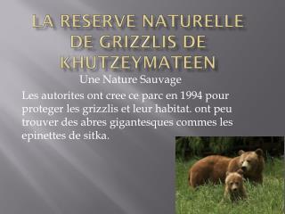 La Reserve  Naturelle  De  Grizzlis  De  Khutzeymateen