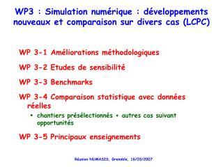WP3 : Simulation numérique : développements nouveaux et comparaison sur divers cas (LCPC)