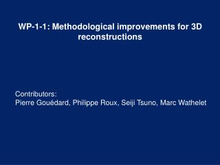 WP-1-1: Methodological improvements for 3D reconstructions