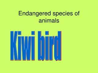 E ndangered species of animals