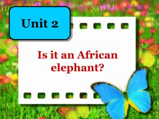 Is it an African elephant?