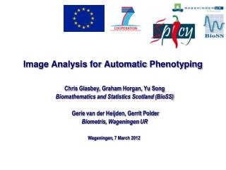 Image Analysis for Automatic  Phenotyping