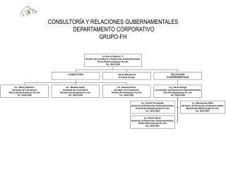 CONSULTOR A Y RELACIONES GUBERNAMENTALES  DEPARTAMENTO CORPORATIVO  GRUPO-FH