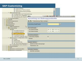 SAP-Customizing