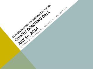 Georgia Hospital Engagement Network Cohort Coaching Call July 16, 2014