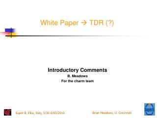 White Paper   TDR (?)
