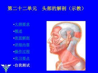 大纲要求  概述  表面解剖  详细内容 操作过程 实习要点 自我测试