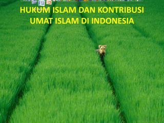 HUKUM ISLAM DAN KONTRIBUSI UMAT ISLAM DI INDONESIA