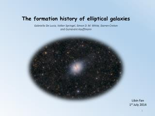 The formation history of elliptical galaxies