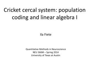 Cricket cercal system: population coding and linear algebra I