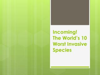 Incoming!  The World's 10 Worst Invasive Species