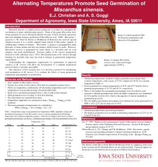 Alternating Temperatures Promote Seed Germination of Miscanthus sinensis. E.J. Christian and A. S. Goggi Department of A