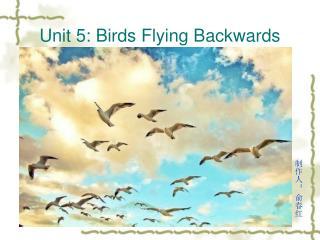 Unit 5: Birds Flying Backwards