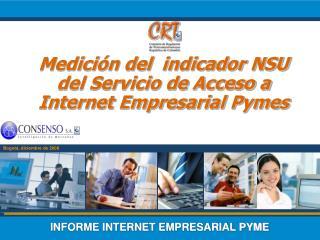 INFORME INTERNET EMPRESARIAL PYME