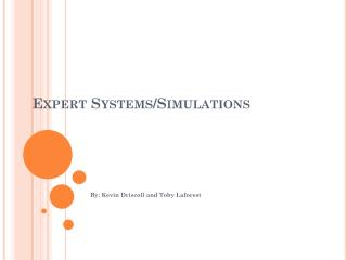 Expert Systems/Simulations