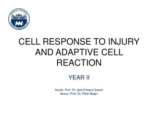 CELL RESPONSE TO INJURY AND ADAPTIVE CELL REACTION