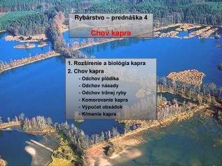 Rybárstvo – prednáška 4 Chov kapra