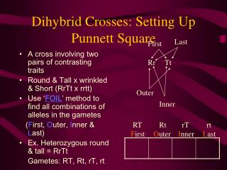 Dihybrid Crosses: Setting Up Punnett Square