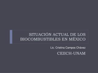 SITUACI N ACTUAL DE LOS BIOCOMBUSTIBLES EN M XICO   CEIICH-UNAM