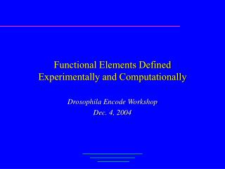Functional Elements Defined Experimentally and Computationally