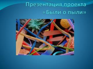 Презентация  проекта «Были о пыли»