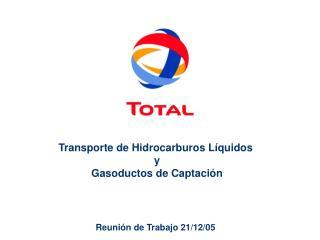 Transporte de Hidrocarburos L quidos  y  Gasoductos de Captaci n     Reuni n de Trabajo 21
