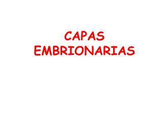 CAPAS EMBRIONARIAS