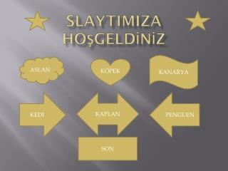SLAYTIMIZA HOŞGELDİNİZ