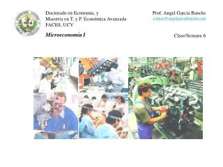 Doctorado en Econom�a, y Maestr�a en T. y P. Econ�mica Avanzada FACES, UCV Microeconom�a I