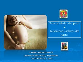 KARINA CARRASCO NEGUE.  Instituto de Salud Sexual y Reproductiva.  UACH. ENFM  130-  2010