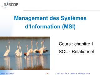Management des Systèmes d'Information (MSI)