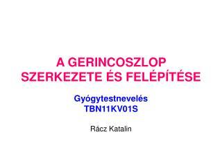 A GERINCOSZLOP SZERKEZETE ÉS FELÉPÍTÉSE