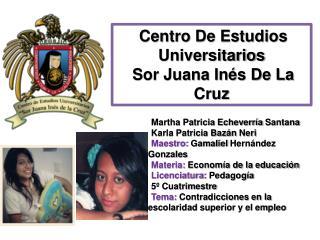 Martha Patricia Echeverría Santana Karla Patricia Bazán  Neri