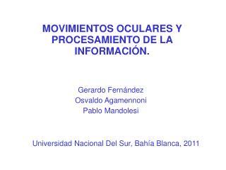 MOVIMIENTOS OCULARES Y  PROCESAMIENTO DE LA INFORMACIÓN.