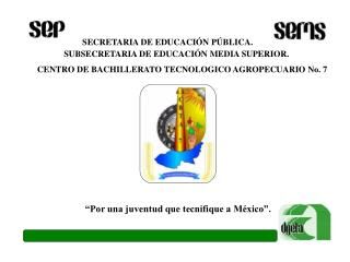SECRETARIA DE EDUCACI N P BLICA.