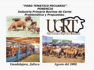 """""""FORO TEMATICO PECUARIO""""  PONENCIA  Industria Primaria Bovinos de Carne"""