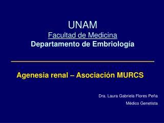 UNAM Facultad de Medicina Departamento de Embriología