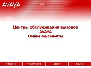 Центры обслуживания вызовов AVAYA Общие компоненты