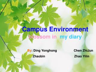 Campus Environment blossom in  my diary