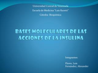 Bases moleculares de las  acciones de la insulina