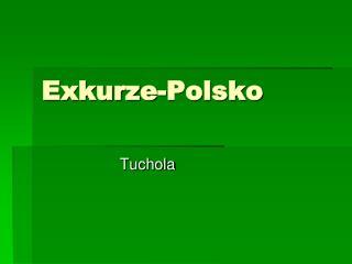 Exkurze-Polsko