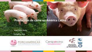 Producción de carne en América Latina