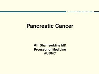 Pancreatic Cancer Ali Shamseddine MD Proessor of Medicine AUBMC