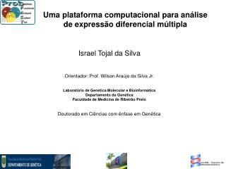 Israel Tojal da Silva Orientador: Prof. Wilson Araújo da Silva Jr.