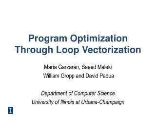 Program Optimization Through Loop Vectorization