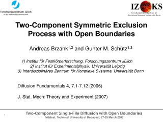 Two -Component Symmetric Exclusion Process with Open Boundaries