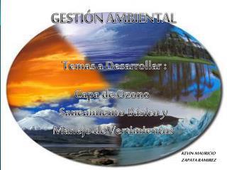 GESTI�N AMBIENTAL