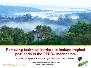 Removing technical barriers to include tropical peatlands in the REDD+ mechanism