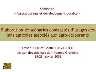 Elaboration de scénarios contrastés d'usages des sols agricoles associés aux agro-carburants