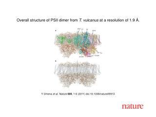 Y Umena  et al .  Nature 000 ,  1 - 6  (2011) doi:10.1038/nature09913